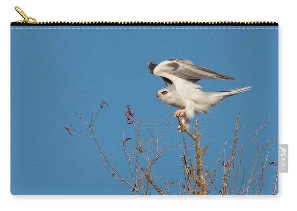 White-tailed Kite  Carry-all Pouch