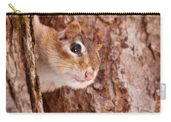 Carry-all Pouch featuring the photograph Whos That Knocking On My Door by Jeff Sinon