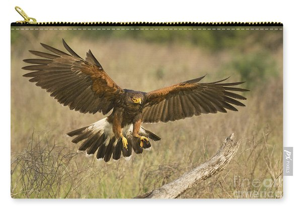 Wild Harris Hawk Landing Carry-all Pouch