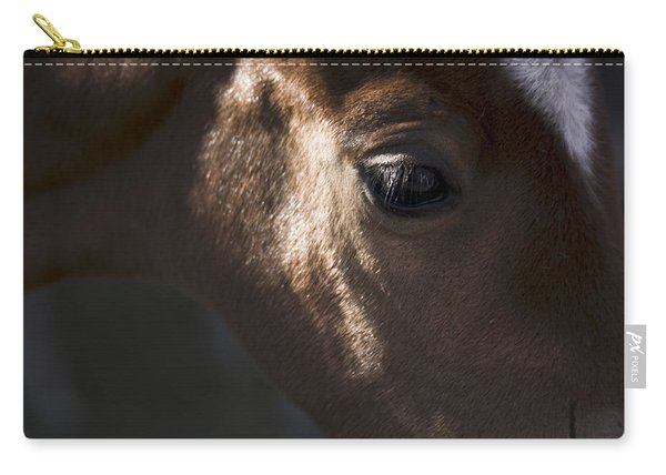 Wild Mustangs Of New Mexico 41  Carry-all Pouch