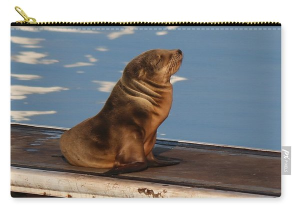 Wild Pup Sun Bathing - 2 Carry-all Pouch