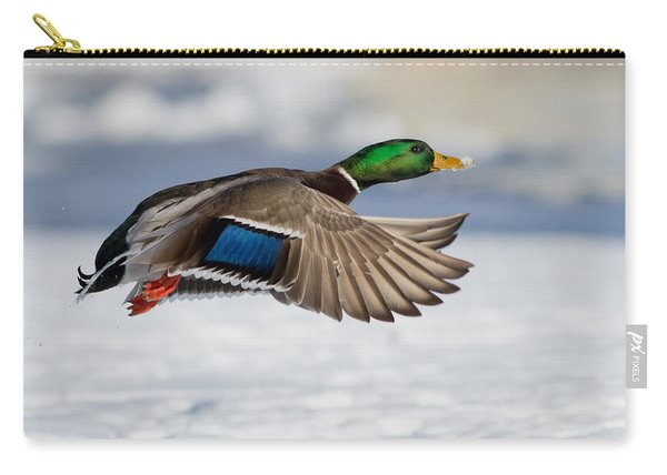 Winter Duck Carry-all Pouch