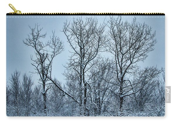 Winter Morning View Carry-all Pouch