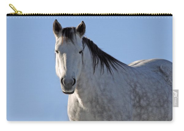 Winter Pony Carry-all Pouch