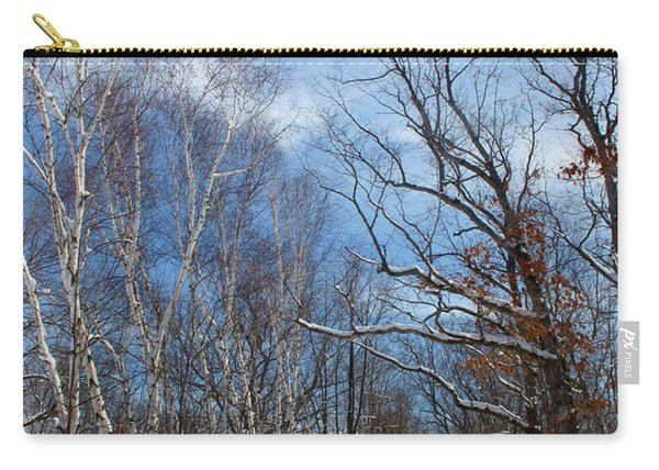 Wisconsin Winter Road Carry-all Pouch