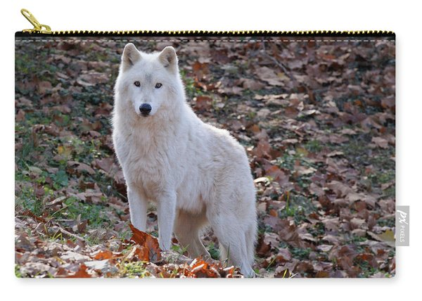 Wolf In Autumn Carry-all Pouch