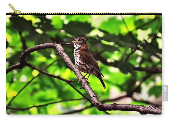Wood Thrush Singing Carry-all Pouch