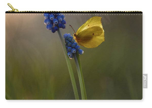 Carry-all Pouch featuring the photograph Yellow Butterfly On Grape Hyacinths by Jaroslaw Blaminsky