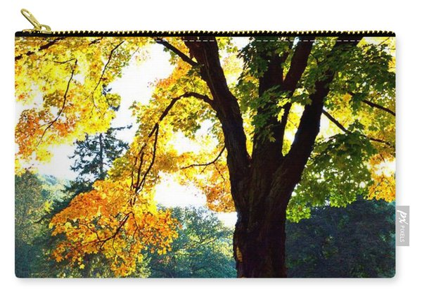 Yellow Highlights Carry-all Pouch