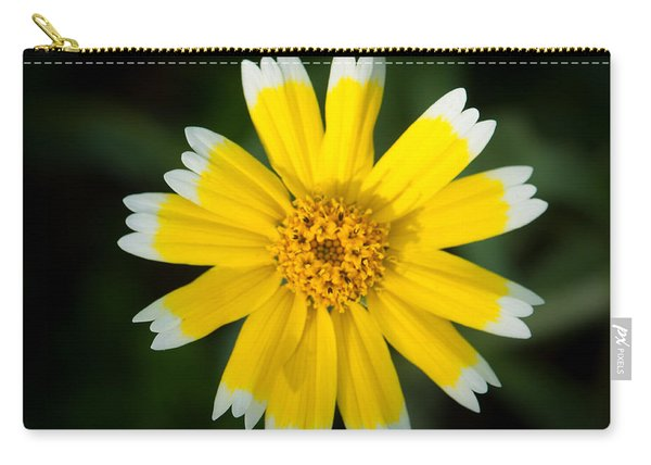 Yellow Sunshine  Carry-all Pouch