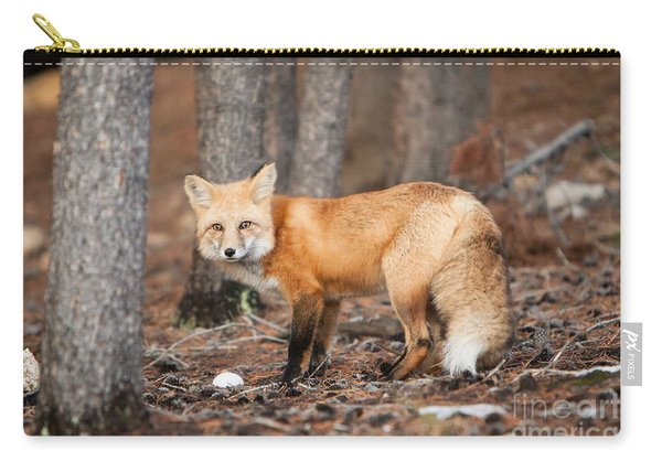 You Caught Me Carry-all Pouch