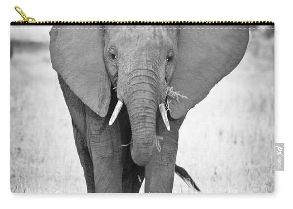 Young Bull Elephant Carry-all Pouch