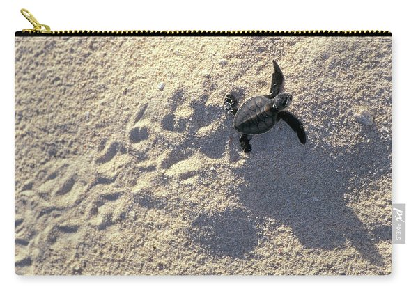 Young Sea Turtle Carry-all Pouch