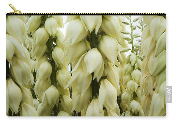 Yucca Forest Carry-all Pouch
