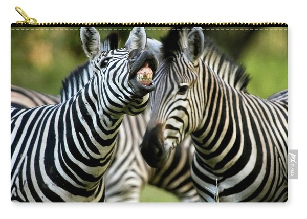 Zebra Showing Its Teeth, Equus Quagga Carry-all Pouch