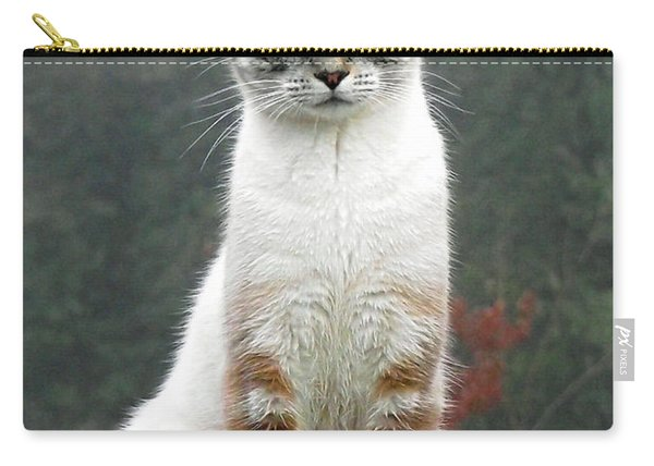 Zing The Cat Carry-all Pouch