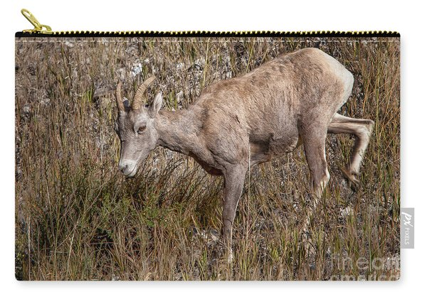 Bighorn Ewe Carry-all Pouch