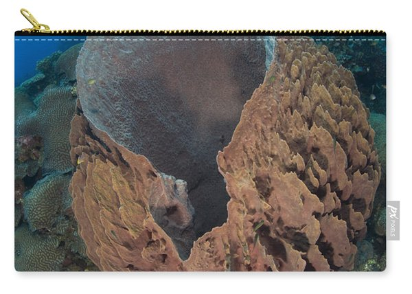 A Barrel Sponge Attached To A Reef Carry-all Pouch
