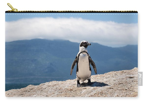 African Penguin Carry-all Pouch