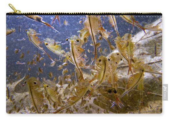 Eastern Fairy Shrimp Easterbrook Forest Carry-all Pouch