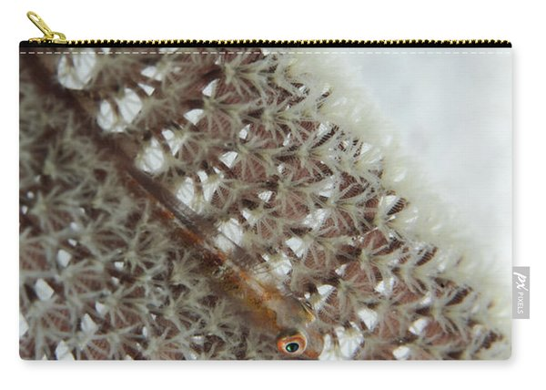 Goby On A Sea Pen, Indonesia Carry-all Pouch