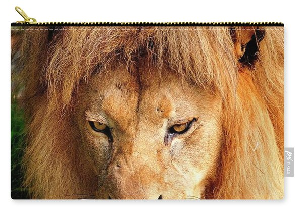 Lion Drinking Carry-all Pouch