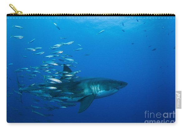 Male Great White Shark And Bait Fish Carry-all Pouch