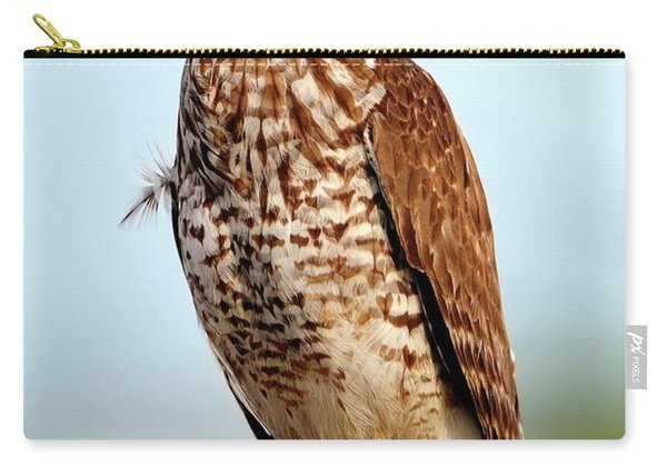 Portrait Of A Red Shouldered Hawk Carry-all Pouch