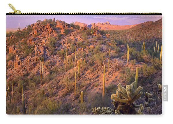 Saguaro And Teddybear Cholla Carry-all Pouch