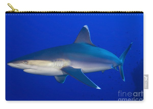 Silvertip Shark, Kimbe Bay, Papua New Carry-all Pouch