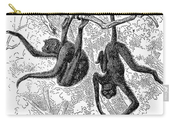 Spider Monkeys Carry-all Pouch