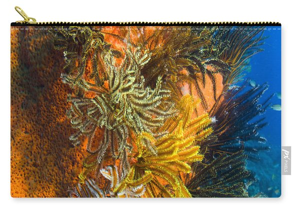 A Colony Of Feather Stars Attached Carry-all Pouch