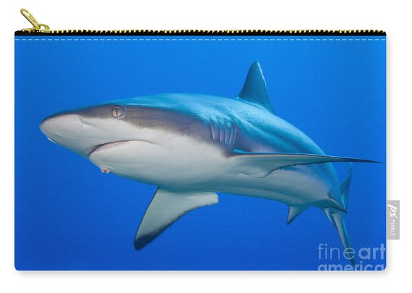 Gray Reef Shark, Kimbe Bay, Papua New Carry-all Pouch