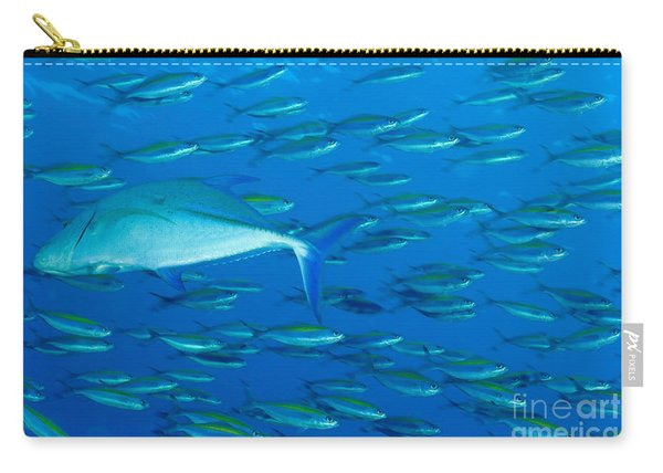 School Of Wide-band Fusilier Fish Carry-all Pouch