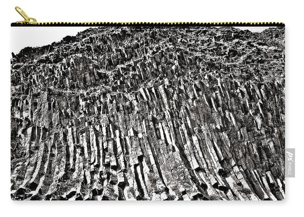 24 Million Years Old ... Carry-all Pouch
