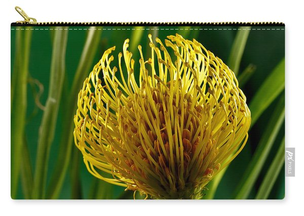 Picture Of A Pincushion Protea Carry-all Pouch