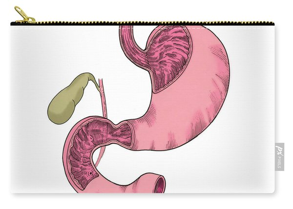 Illustration Of Stomach And Duodenum Carry-all Pouch
