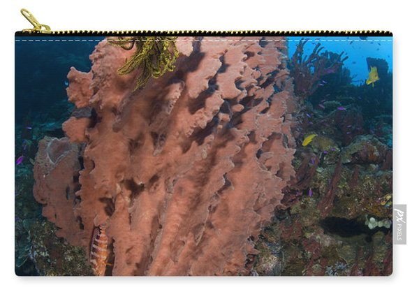 A Barrel Sponge With A Yellow Crinoid Carry-all Pouch