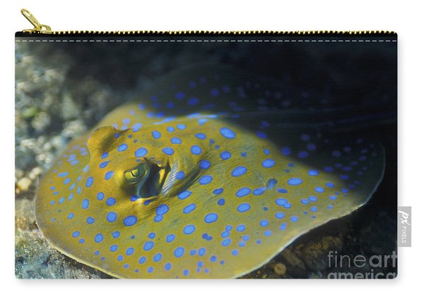 A Blue Spotted Lagoon Fantail Ray Carry-all Pouch