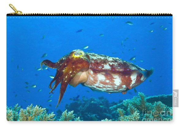 A Broadclub Cuttlefish, Kimbe Bay Carry-all Pouch