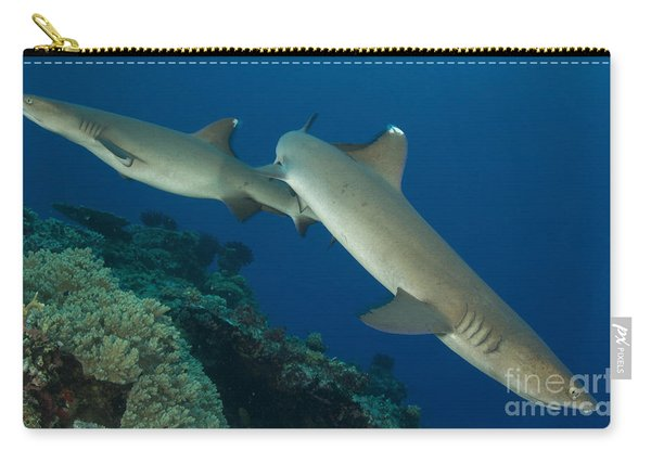 A Pair Of Whitetip Reef Sharks, Kimbe Carry-all Pouch