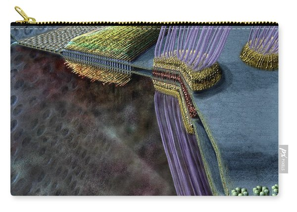 Animal Cell Junctions Carry-all Pouch