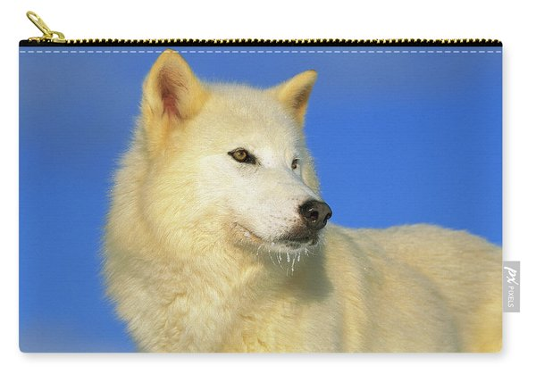 Arctic Wolf Canis Lupus Portrait Carry-all Pouch