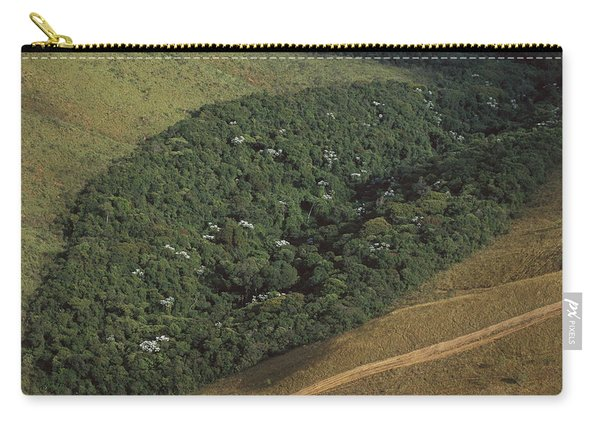 Atlantic Rainforest Remnant Brazil Carry-all Pouch