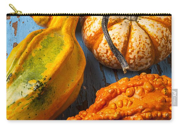 Autumn Gourds Still Life Carry-all Pouch