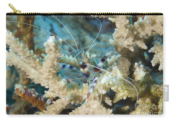 Banded Coral Shrimp Amongst Staghorn Carry-all Pouch