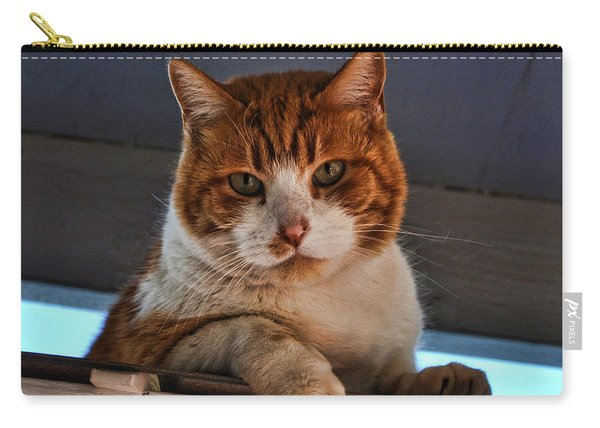 Beware Of Cat  Carry-all Pouch
