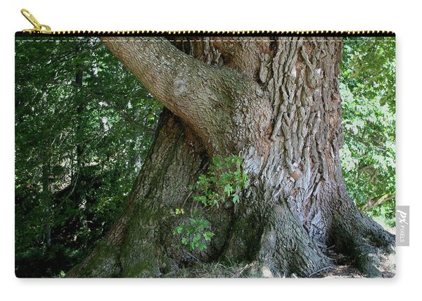 Big Fat Tree Trunk Carry-all Pouch
