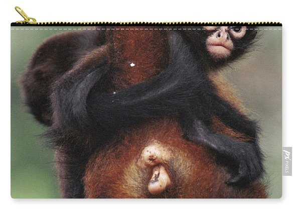 Black-handed Spider Monkey Ateles Carry-all Pouch