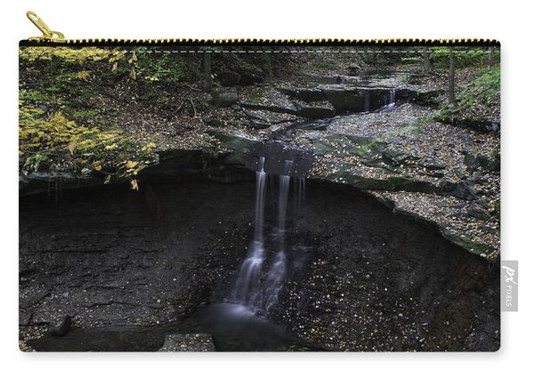 Blue Hen Falls Carry-all Pouch